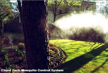 Outdoor Mosquitoes Control